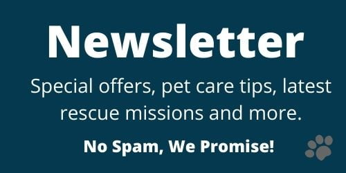 Newsletter Signup | Wellington Veterinary Hospital