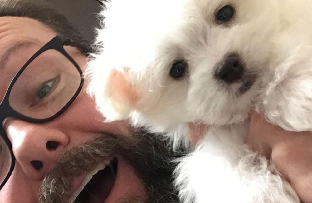 Housetraining a Puppy | Wellington Veterinary Hospital