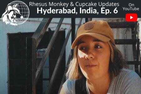 India Ep #6 | Dr. Cliff Worldwide Vet